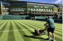 Tutti i segreti dell'erba di Wimbledon