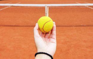 La pallina da tennis, tutto ciò che serve sapere
